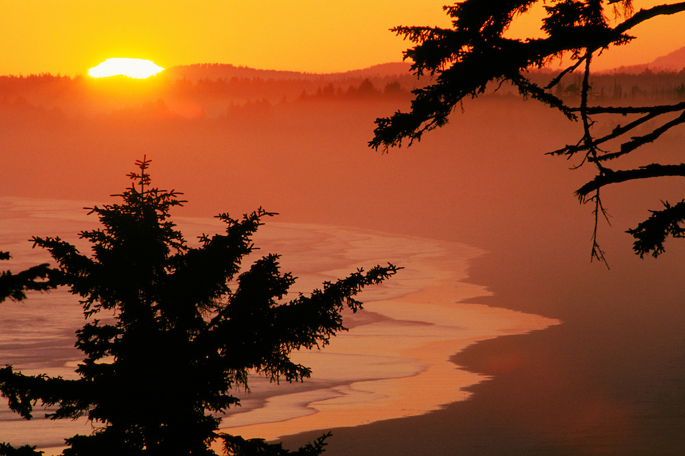 Sunset over Wickaninnish Bay from Green Point in Pacific Rim National Park; Vancouver Island, British Columbia, Canada.
