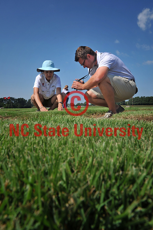 Turf grass faculty and students look over samples at the research farm.
