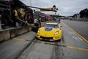 October 1- 3, 2015: Road Atlanta, Petit Le Mans 2015 - Magnussen, Garcia/Briscoe, USA Corvette Racing C7.R GTLM pitstop