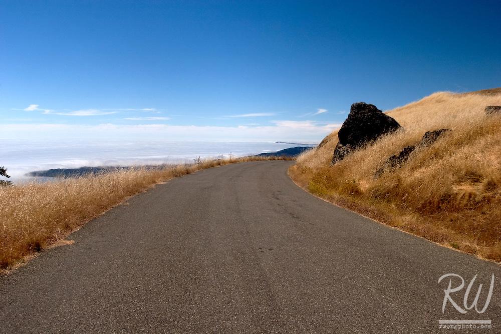 Bolinas Ridge Road, Mount Tamalpais State Park, California
