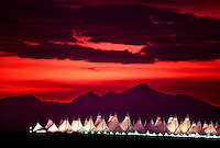 The main terminal of Denver International Airport with sunset on the Rockies in the background, Denver, Colorado USA