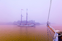 Schooner Heritage in the fog, Pulpit harbor, Penobscot Bay, Maine USA