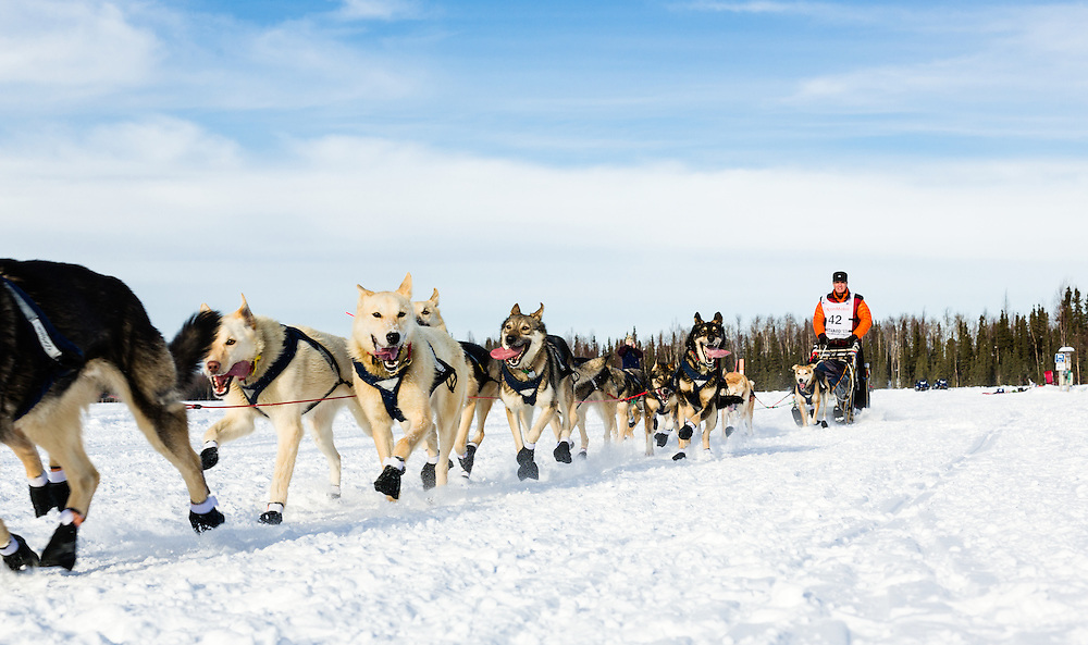 Musher Linwood Fiedler competing in the 41st Iditarod Trail Sled Dog Race on Long Lake after leaving the Willow Lake area at the restart in Southcentral Alaska.  Afternoon.