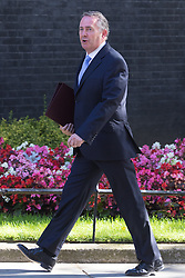 Downing Street, London, July 19th 2016. International Trade Secretary Liam Fox arrives at the first full cabinet meeting since Prime Minister Theresa May took office.