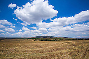 Israel, Lower Galilee Ramat Hatzviam (Antelope Plain) Landscape Part of Issachar plains