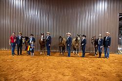 ZSCHAU Andre (Chef d´Equipe), LUDWIG Grischa (GER), SCHÖLLER Robin (GER), SÜCHTING Markus (GER), TILL Maria (GER), SCHUMACHER Julia (GER), HÖRMANN Nico (Bundestrainer)<br /> Tryon - FEI World Equestrian Games™ 2018<br /> Reining Teamwertung und 1.Einzelqualifikation<br /> 10. September 2018<br /> © www.sportfotos-lafrentz.de/Stefan Lafrentz