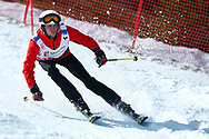 """Schladming, Austria - 2017 March 21: Wojciech Gornicki from Poland (270) competes in Alpine Skiing Competition while Special Olympics World Winter Games Austria 2017 on the """"Sepp-Walcher-Downhill"""" (Slope 32) near the """"Tauernalm"""" in Rohrmoos on March 21, 2017 in Schladming, Austria.<br /> <br /> Mandatory credit:<br /> Photo by © Adam Nurkiewicz / Mediasport<br /> <br /> Adam Nurkiewicz declares that he has no rights to the image of people at the photographs of his authorship.<br /> <br /> Picture also available in RAW (NEF) or TIFF format on special request.<br /> <br /> Any editorial, commercial or promotional use requires written permission from the author of image.<br /> <br /> Image can be used in the press when the method of use and the signature does not hurt people on the picture."""