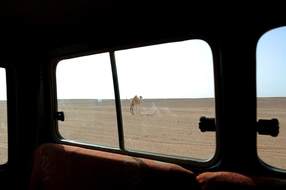 Saharawi refugees in Tindouf.