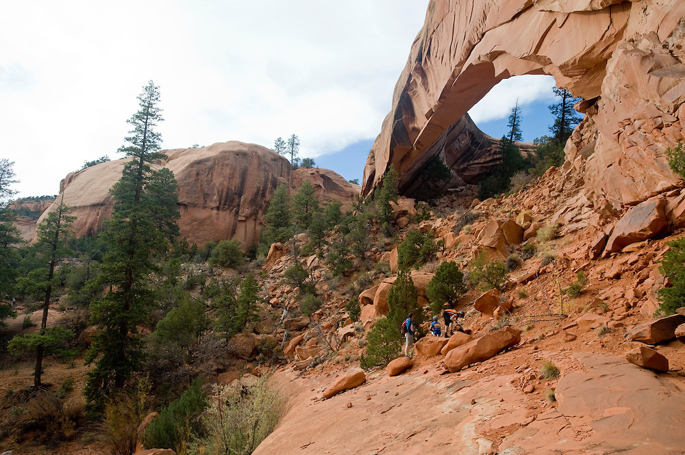 Snake Arch Adventure