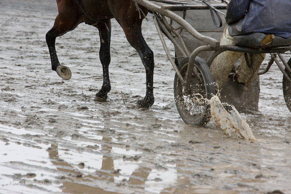 Harness racing jockeys training their horses in cold rainy conditions in Monticello, New York.