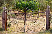 Farm gateway of wrought iron near Montalcino, Val D'Orcia, Tuscany, Italy
