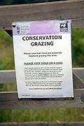 Conservation Grazing by sheep sign on heathland, Shottisham, Suffolk, England