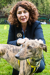 London, October 26 2017. Diana Johnson MP (Labour, Hull North) and rescue Lurcher Lollie at the annual Kennel Club and Dogs Trust Westminster Dog Of The Year competition that sees MPs and members of the House of Lords with their dogs as well as rescue dogs from the Dogs Trust. © Paul Davey