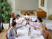 Friends toasting across table at a formal dinner party side view