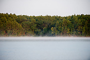 Walden Pond; July 31, 2014