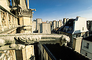 France. Paris. 4th district. Elevated view.  the roofs of saint Merry church