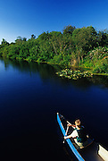 Image of Mercer Slough Nature Park in Bellevue, Washington, Pacific Northwest, model released
