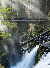 Sol Duc Area - Olympic National Park