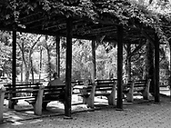 The chess pavilion in Central Park