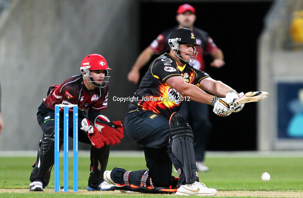 Firebirds' Jesse Ryder in action during the 2012/2013 HRV Cup Twenty20 session. Wellington Firebirds v Canterbury Wizards at Westpac Stadium, Wellington, New Zealand on Friday 9 November 2012. Photo: Justin Arthur / photosport.co.nz