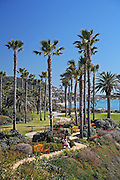 Treasure Island Park at Laguna Beach Montage Resort