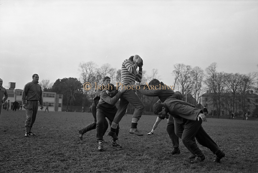 Brian Thomas gathers the ball in line out, .Forwards include, Denzil Williams and Brian Price,..Irish Rugby Football Union, Ireland v Wales, Five Nations, Welsh Rugby team pracrice at Palmerstown, Dublin, Ireland, Friday 6th March, 1964,.6.3.1964, 3.6.1964,..Referee- A C Luff, Rugby Football Union, ..Score- Ireland 6 - 15 Wales, ..Welsh Team, ..G T R Hodgson, Wearing number 15 Welsh jersey, Full Back, Neath Rugby Football Club, Neath, Wales,..P Rees, Wearing number 11 Welsh jersey, Left Wing, Newport Rugby Football Club, Newport, Wales, ..K Bradshaw, Wearing number 12 Welsh jersey, Left Centre, Bridgend Rugby Football Club, Bridgend, South Wales,..J Dawes, Wearing number 13 Welsh jersey, Right Centre, London Welsh Rugby Football Club, Surrey, England, ..S J Watkins, Wearing number 14 Welsh jersey, Right Wing, Newport Rugby Football Club, Newport, Wales, ..D Watkins, Wearing number 10 Welsh jersey, Stand Off, Newport Rugby Football Club, Newport, Wales, ..D C T Rowlands, Wearing number 9 Welsh jersey, Captain of the Welsh team, Scrum Half, Pontypool Rugby Football Club, Pontypool, Wales,..D Williams, Wearing number 1 Welsh jersey, Forward, Ebbw Vale Rugby Football Club, Gwent, South Wales,..N R Gale, Wearing number 2 Welsh jersey, Forward, Llanelly Rugby Football Club, Llanelly, Wales,..L J Cunningham, Wearing number 3 Welsh jersey, Forward, Aberavon Rugby Football Club, Port Talbot, Wales, ..B E V Price, Wearing number 4 Welsh jersey, Forward, Newport Rugby Football Club, Newport, Wales, ..B E Thomas, Wearing number 5 Welsh jersey, Forward, Neath Rugby Football Club, Neath, Wales,..G J Prothero, Wearing number 6 Welsh jersey, Forward, Bridgend Rugby Football Club, Bridgend, South Wales,..A Pask, Wearing number 8 Welsh jersey, Forward, Abertillery Rugby Football Club, Gwent, South Wales, ..D J Hayward, Wearing number 7 Welsh jersey, Forward, Cardiff Rugby Football Club, Cardiff, Wales,.