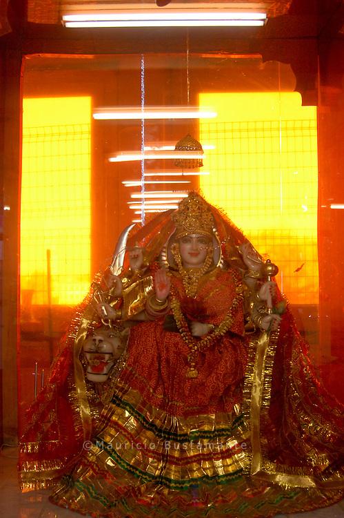 The Hindu-Temple Hamburg of the Afghan Hindu Gemeinde eV Moortis Staphana
