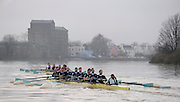 Putney, GREAT BRITAIN,  foregound, crew, Personality and crew Looks, during the 2008 Varsity/Cambridge University Trial Eights, raced over the championship course. Putney to Mortlake, Tue. 16.12.2008. [Mandatory Credit, Peter Spurrier/Intersport-images..Crew Personality. Bow Dan SHAUGHNESSY, 2. Shane O'MARA, 3. John CLAY, 4. Ryan MONAGHAN, 5. Fred GILL, 6. Deaglan McEACHERN, 7. Hardy CUTBASCH, stroke,. Rob WEITEMAYER and cox Rebecca DOWBIGGIN...Crew Looks; Bow James STRAWSON. 2. Joel JENNINGS, 3. Code STERNAL, 4 Peter MARSLAND, 5. George NASH, 6. Henry PELLY, 7. Tom RANSLEY, stroke Silas STAFFORD and Cox Helen HODGES. Varsity Boat Race, Rowing Course: River Thames, Championship course, Putney to Mortlake 4.25 Miles,