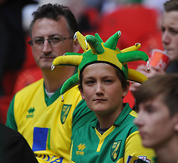 Norwich Fans, Middlesbrough v Norwich, Sky Bet Championship, Play Off Final, Wembley Stadium, Monday  25th May 2015