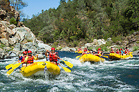 Rafting the South Fork of the American River. Coloma, CA.