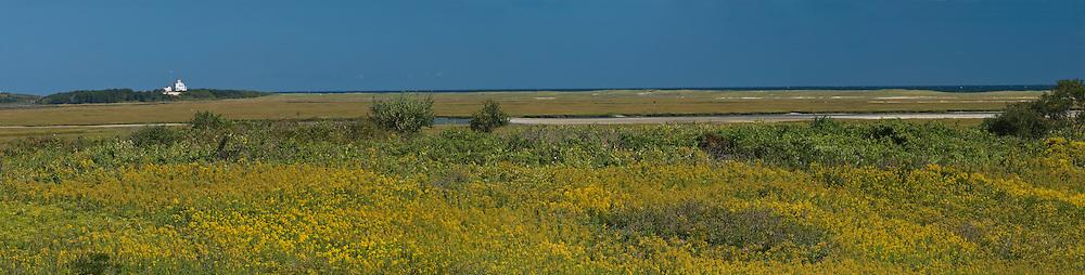 Massachusetts, Eastham, Fort Hill, Salt Pond Bay, Cape Cod National Seashore