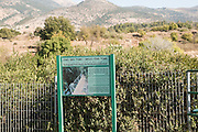 Hermon Stream Nature reserve (Banias) Golan Heights Israel