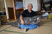 VIDEO AVAILABLE - JAPAN OUT<br /> <br /> Man lives  with 2 meter alligator<br /> <br /> In Kure City, Hiroshima, Japan, lives Mr. Nobumitsu Murabayashi, a 65 year old man who has been living with an alligator for 34 years. The alligator's name is Caiman, and it is a male spectacled caiman. He bought the baby alligator at a festival without thinking too much about it, and now it's grown into a hefty 2.1 meters and 46 kilograms. Though Mr. Murabayashi keeps a massive tub of water in front of his house for Caiman, he roams freely, spending a lot of his time in the tatami room, or sometimes the bathroom. Because of this, he has to have the tatami renewed once a year, and the sliding paper doors are full of holes. Despite that, Mr. Murabayashi cares for Caiman like his own son, and when he has time he takes him for walks in the city. Don't worry, he has permission from the city government! He's been featured in TV shows before, and many people know about him, but still, when people see the huge alligator walking down the street, even the locals stop and stare at him closely. With his children all grown up and independent, Mr. Murabayashi now showers Caiman with all of his attention. Caiman, who is expected to live another 20 to 30 years, has become the joy of Mr. Murabayashi's life. <br /> ©Exclusivepix Media