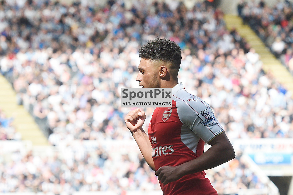 Alex Oxlade-Chamberlain celebrates his goal in the Newcastle United v Arsenal Barclays Premier League match at St James' Park Newcastle 09 August 2015<br /> <br /> (c) Greg Macvean / SportPix.org.uk
