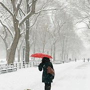 Woman walking her dogs on The Mall in Central Park, New York City during a snowstorm.