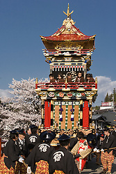 Asia, Japan, Gifu prefecture, Takayama (also known as Hida-Takayama), men pull elaborate festival float (yatai)  through streets in Gonjunko Procession during Sanno Festival of Hie Jinja Shrine, held annually in April.  Cherry blossoms in background.