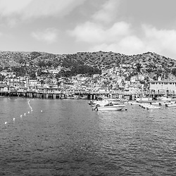 Catalina Island Avalon Harbor ultra high resolution black and white panoramic photo. Includes Catalina Casino, Avalon Pier, and downttown Avalon along Avalon Harbor, Beautiful Santa Catalina Island is a popular travel destination off the coast of Southern California. Panoramic image ratio is 1:3 and is 108 megapixels. Copyright ⓒ 2017 Paul Velgos with All Rights Reserved.