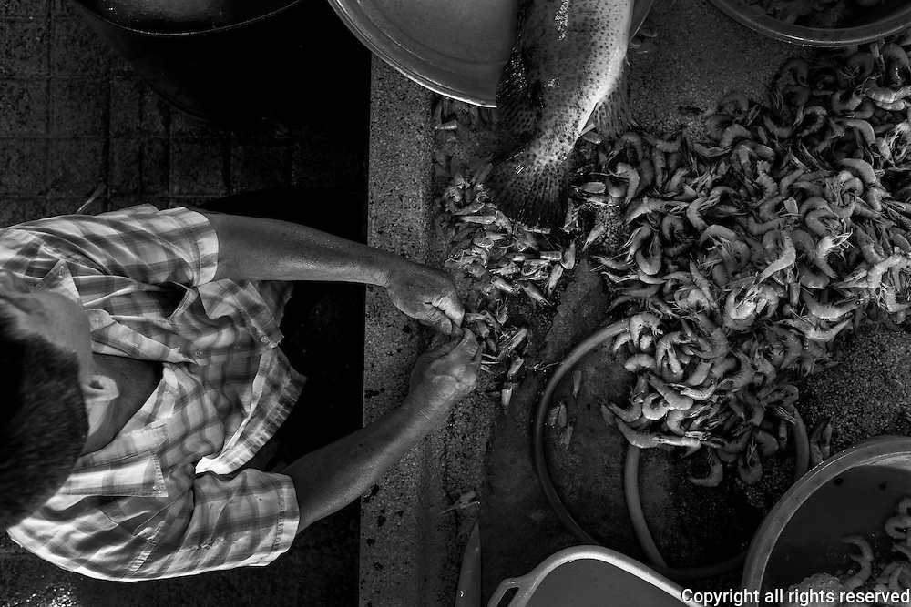 A fish monger in George Town's Campbell Street Market, cleans prawns for sale to restaurants around the island. Campbell Street Market is one of the oldest markets still in use in Malaysia.