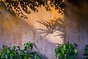 Exterior Wall at Tugu Hotel.
