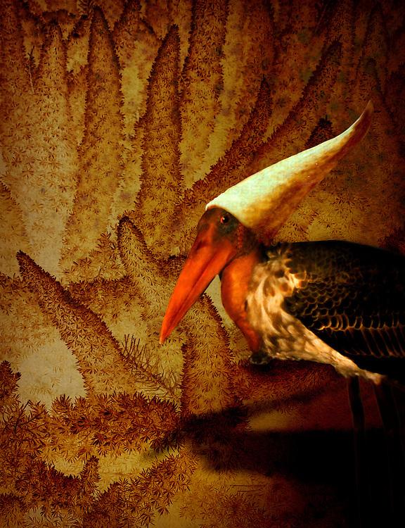 A conceptual image with a bird