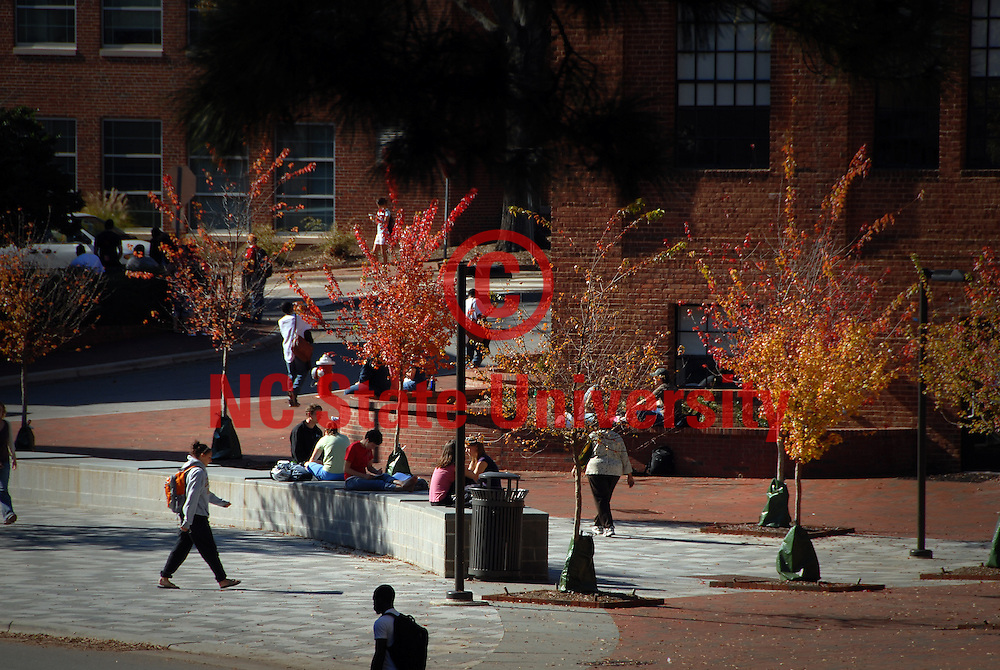 Students head to and from class on a pretty Fall day. PHOTO BY ROGER WINSTEAD