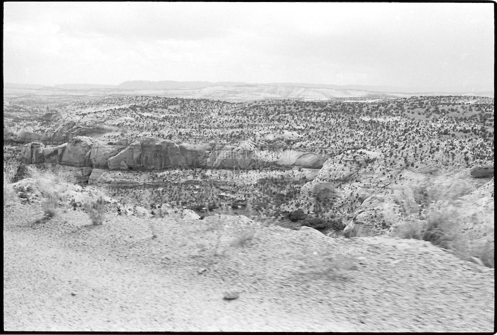 South of Boulder Mountain Utah. View shot on Tri-X, Nikon Ftn camera, Nikor 35mm f/2 lens. 1000th sec F/11