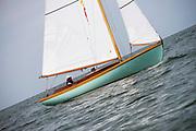 First Tracks sailing in the Opera House Cup regatta.