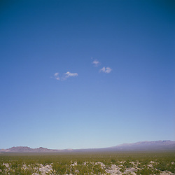 Open expanse in the Mojave National Preserve, CA.