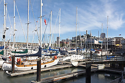 San Francisco, CA:  Anchorage adjacent to Pier 39, with Coit Tower in background.