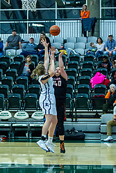 25 January 2020: Fisher Bunnies v EPG (El Paso Gridley) girls 3rd place during the 109th 2020 McLean County Tournament at Shirk Center in Bloomington IL<br /> <br /> Photo by Alan Look