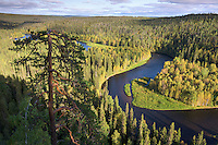 Flussschlaufe im Oulanka Nationalpark