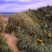 Eastern Scotland