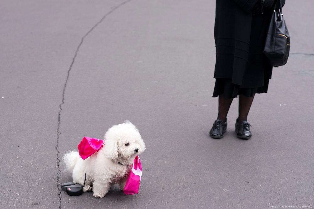 """La """"Manif pour Tous"""" - Manifestation contre le """"mariage pour tous"""" - Paris 13 janvier 2013"""