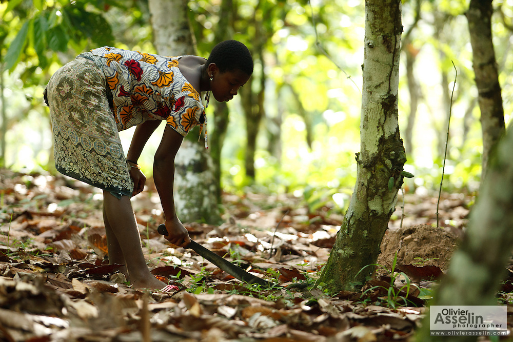 Drissa Amoin Rose, 11, uses a machete to clear dry leaves under cocoa trees on her family's cocoa plantation near the village of Soumaorodougou, Bas-Sassandra region, Cote d'Ivoire on Saturday March 3, 2012. She goes to school but help with farming chores on weekends.